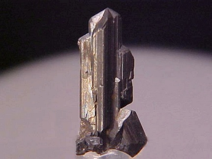 Chalcocite - Mountain Con Mine, Butte, Montana